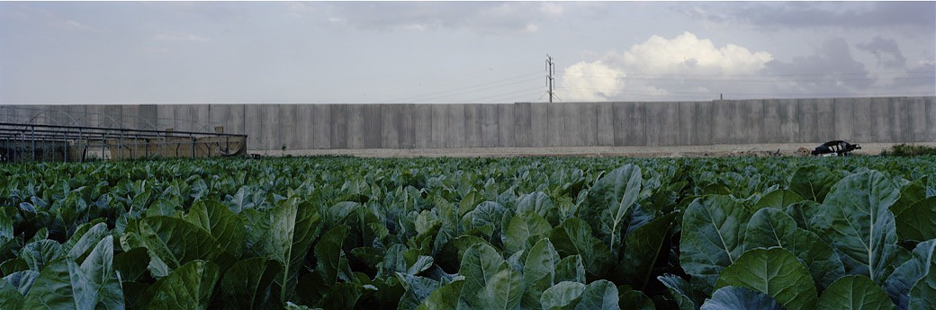 03_0643IL_Cabbage_field_wall