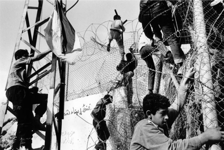 18PP boys climbing  fence Kopie
