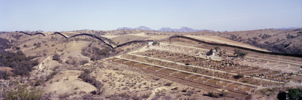 22_1125US_Cattle_coral_hills_fence